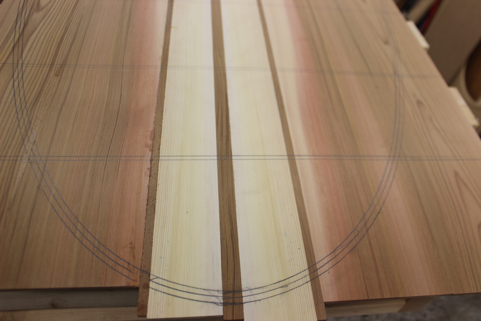 How to build a wood paddle board - layout